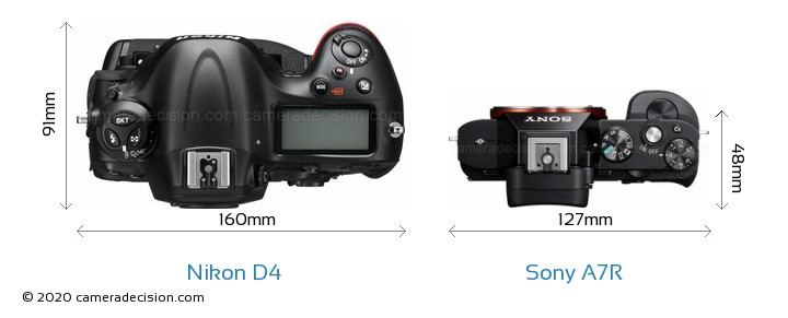 Nikon D4 vs Sony A7R Camera Size Comparison - Top View