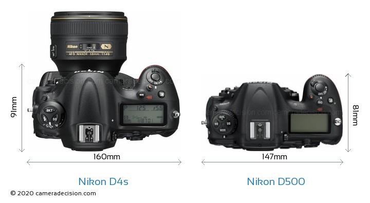Nikon D4s vs Nikon D500 Camera Size Comparison - Top View
