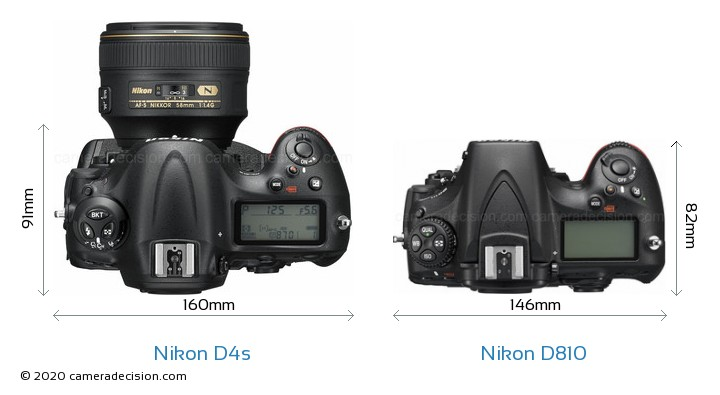 Nikon D4s vs Nikon D810 Camera Size Comparison - Top View