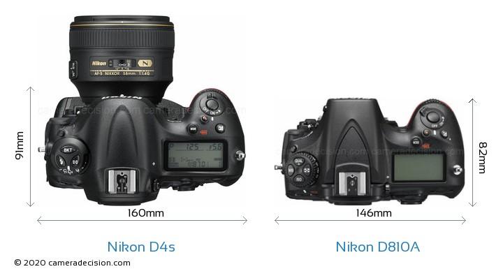 Nikon D4s vs Nikon D810A Camera Size Comparison - Top View