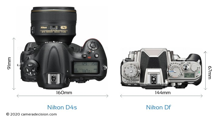 Nikon D4s vs Nikon Df Camera Size Comparison - Top View
