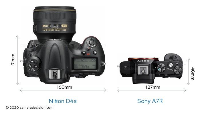 Nikon D4s vs Sony A7R Camera Size Comparison - Top View