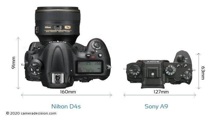 Nikon D4s vs Sony A9 Camera Size Comparison - Top View
