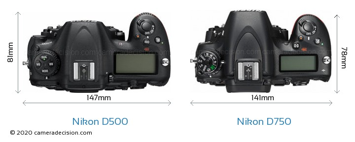 Nikon D500 vs Nikon D750 Camera Size Comparison - Top View
