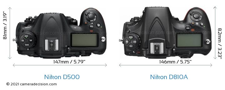 Nikon D500 vs Nikon D810A Camera Size Comparison - Top View