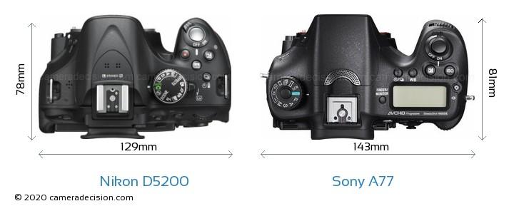 Nikon D5200 vs Sony A77 Camera Size Comparison - Top View