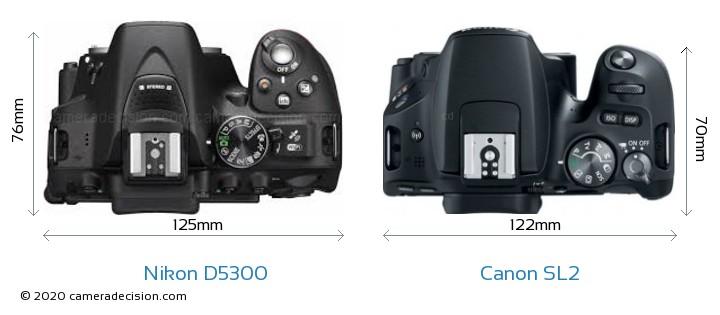 Nikon D5300 vs Canon SL2 Camera Size Comparison - Top View