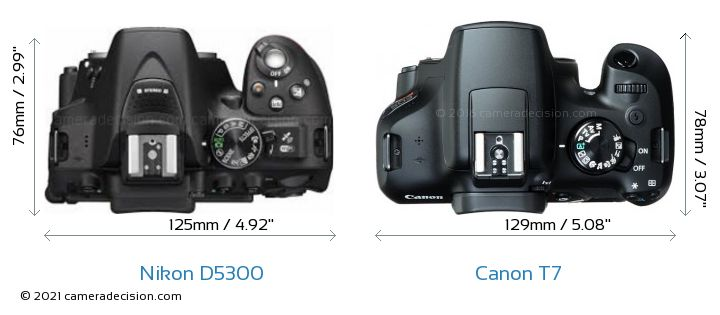 Nikon D5300 vs Canon T7 Camera Size Comparison - Top View