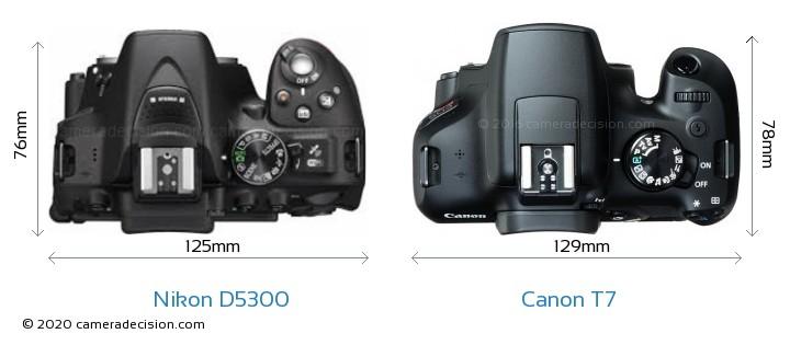 Nikon D5300 vs Canon T7 Camera Size Comparison - Top View