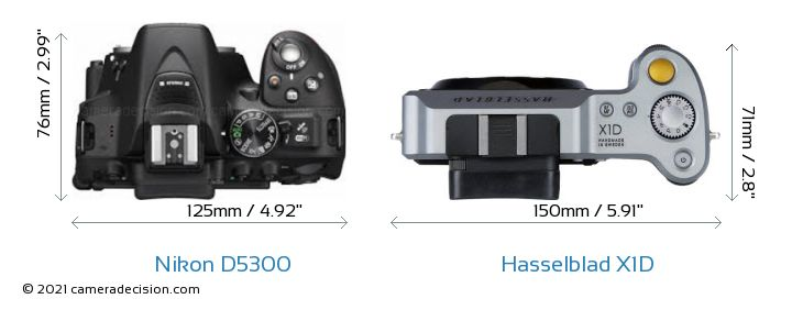 Nikon D5300 vs Hasselblad X1D Camera Size Comparison - Top View