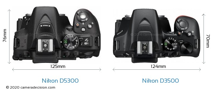 Nikon D5300 vs Nikon D3500 Camera Size Comparison - Top View