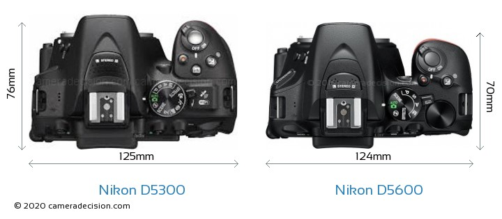 Nikon D5300 vs Nikon D5600 Camera Size Comparison - Top View