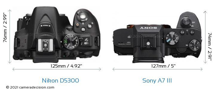 Nikon D5300 vs Sony A7 III Detailed Comparison