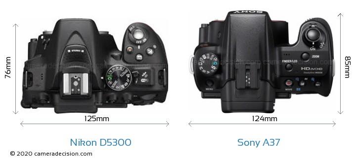 Nikon D5300 vs Sony A37 Camera Size Comparison - Top View