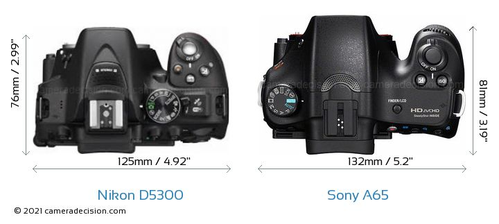 Nikon D5300 vs Sony A65 Camera Size Comparison - Top View