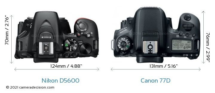 Nikon D5600 vs Canon 77D Camera Size Comparison - Top View