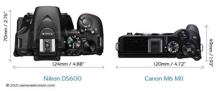Nikon D5600 vs Canon M6 MII Camera Size Comparison - Top View