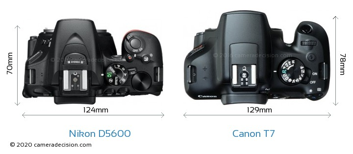 Nikon D5600 vs Canon T7 Camera Size Comparison - Top View
