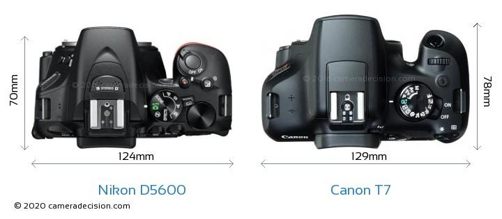 Nikon D5600 vs Canon T7 Camera Size Comparison - Top View