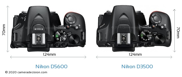 Nikon D5600 vs Nikon D3500 Camera Size Comparison - Top View