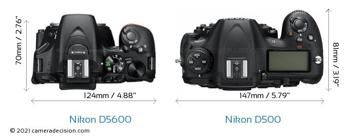 Nikon D5600 vs Nikon D500 Camera Size Comparison - Top View