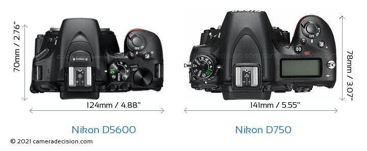 Nikon D5600 vs Nikon D750 Camera Size Comparison - Top View