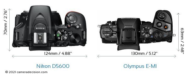 Nikon D5600 vs Olympus E-M1 Camera Size Comparison - Top View