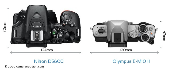 Nikon D5600 vs Olympus E-M10 II Camera Size Comparison - Top View