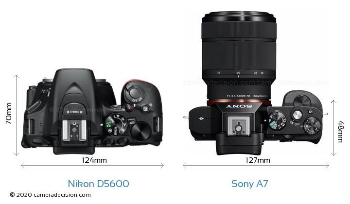 Nikon D5600 vs Sony A7 Camera Size Comparison - Top View