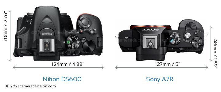 Nikon D5600 vs Sony A7R Camera Size Comparison - Top View