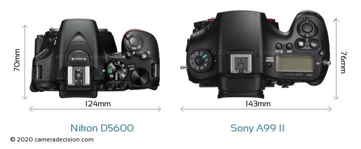Nikon D5600 vs Sony A99 II Camera Size Comparison - Top View