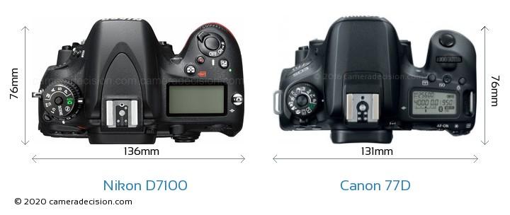 Nikon D7100 vs Canon 77D Camera Size Comparison - Top View