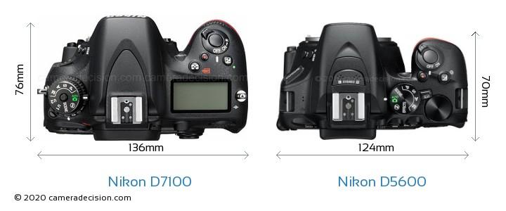 Nikon D7100 vs Nikon D5600 Camera Size Comparison - Top View