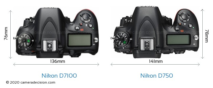 Nikon D7100 vs Nikon D750 Camera Size Comparison - Top View