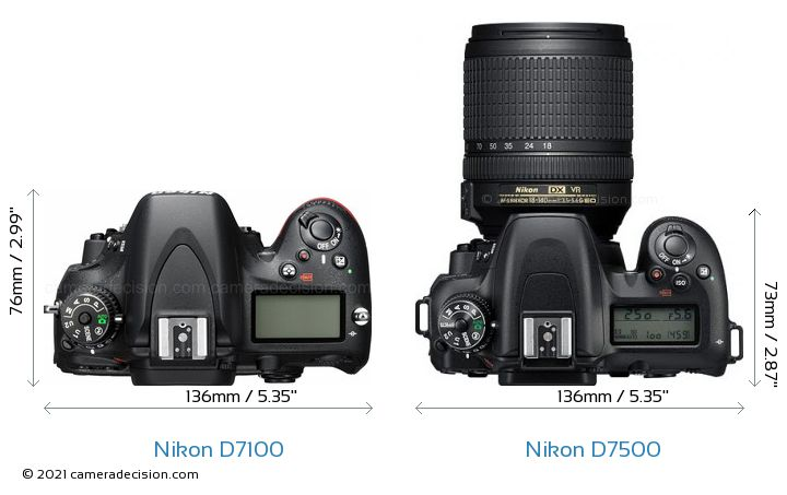 Nikon D7100 vs Nikon D7500 Camera Size Comparison - Top View