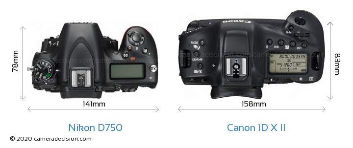 Nikon D750 vs Canon 1D X II Camera Size Comparison - Top View