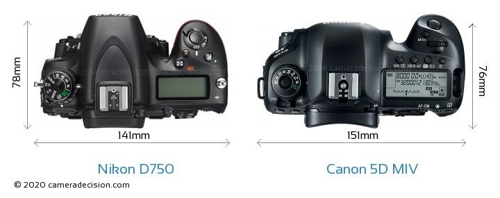 Nikon D750 vs Canon 5D MIV Camera Size Comparison - Top View