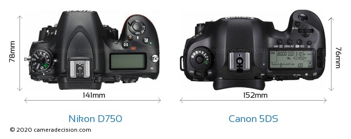 Nikon D750 vs Canon 5DS Camera Size Comparison - Top View