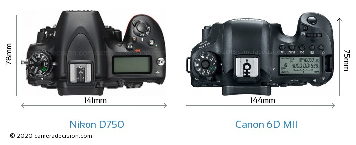Nikon D750 vs Canon 6D MII Camera Size Comparison - Top View