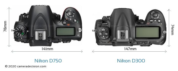 Nikon D750 vs Nikon D300 Camera Size Comparison - Top View