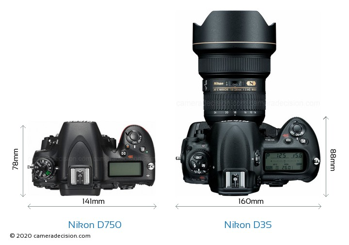 Nikon D750 vs Nikon D3S Camera Size Comparison - Top View