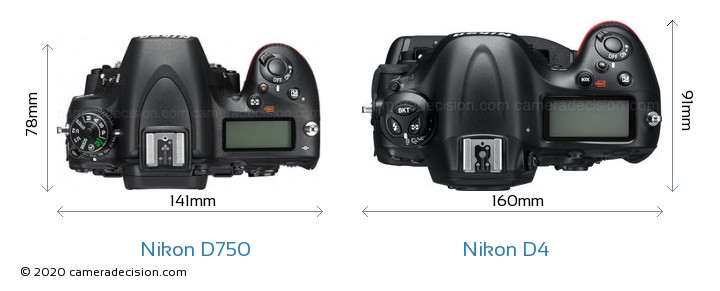 Nikon D750 vs Nikon D4 Camera Size Comparison - Top View