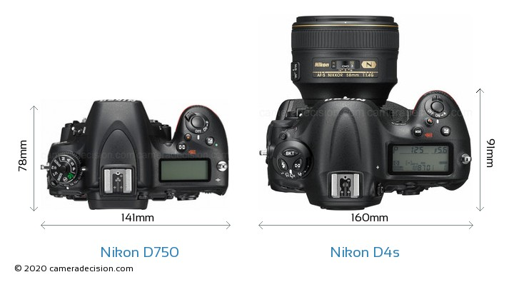 Nikon D750 vs Nikon D4s Camera Size Comparison - Top View