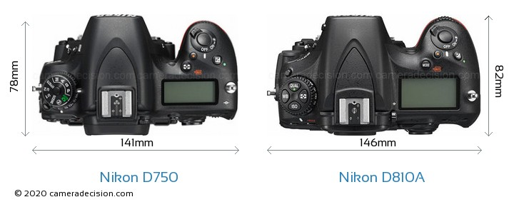 Nikon D750 vs Nikon D810A Camera Size Comparison - Top View