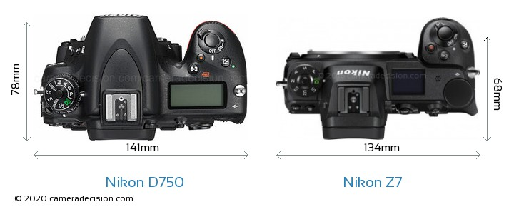 Nikon D750 vs Nikon Z 7 Camera Size Comparison - Top View