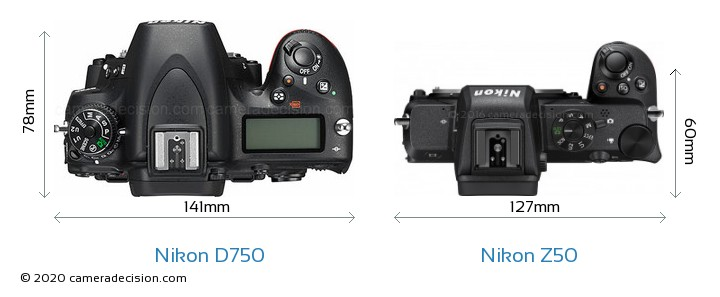 Nikon D750 vs Nikon Z50 Camera Size Comparison - Top View