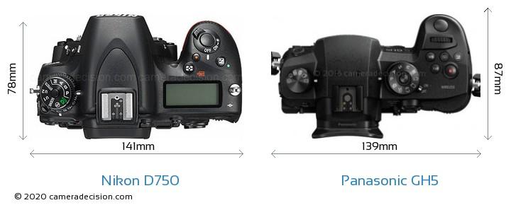 Nikon D750 vs Panasonic GH5 Camera Size Comparison - Top View