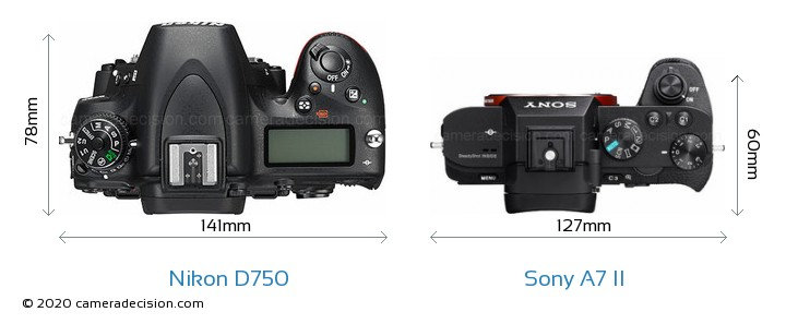 Nikon D750 vs Sony A7 II Camera Size Comparison - Top View
