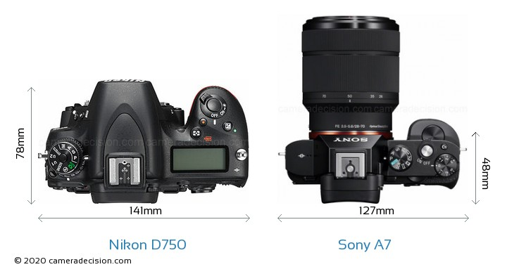 Nikon D750 vs Sony A7 Camera Size Comparison - Top View