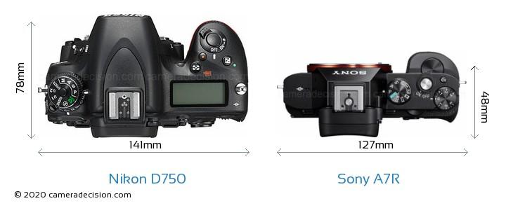Nikon D750 vs Sony A7R Camera Size Comparison - Top View